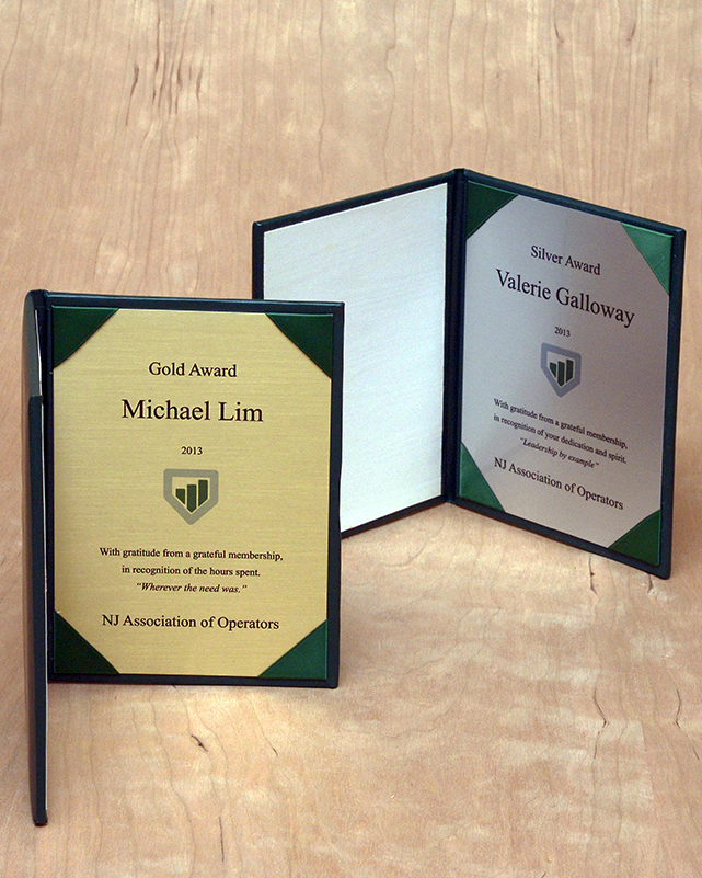 Examples of gold and silver brushed awards